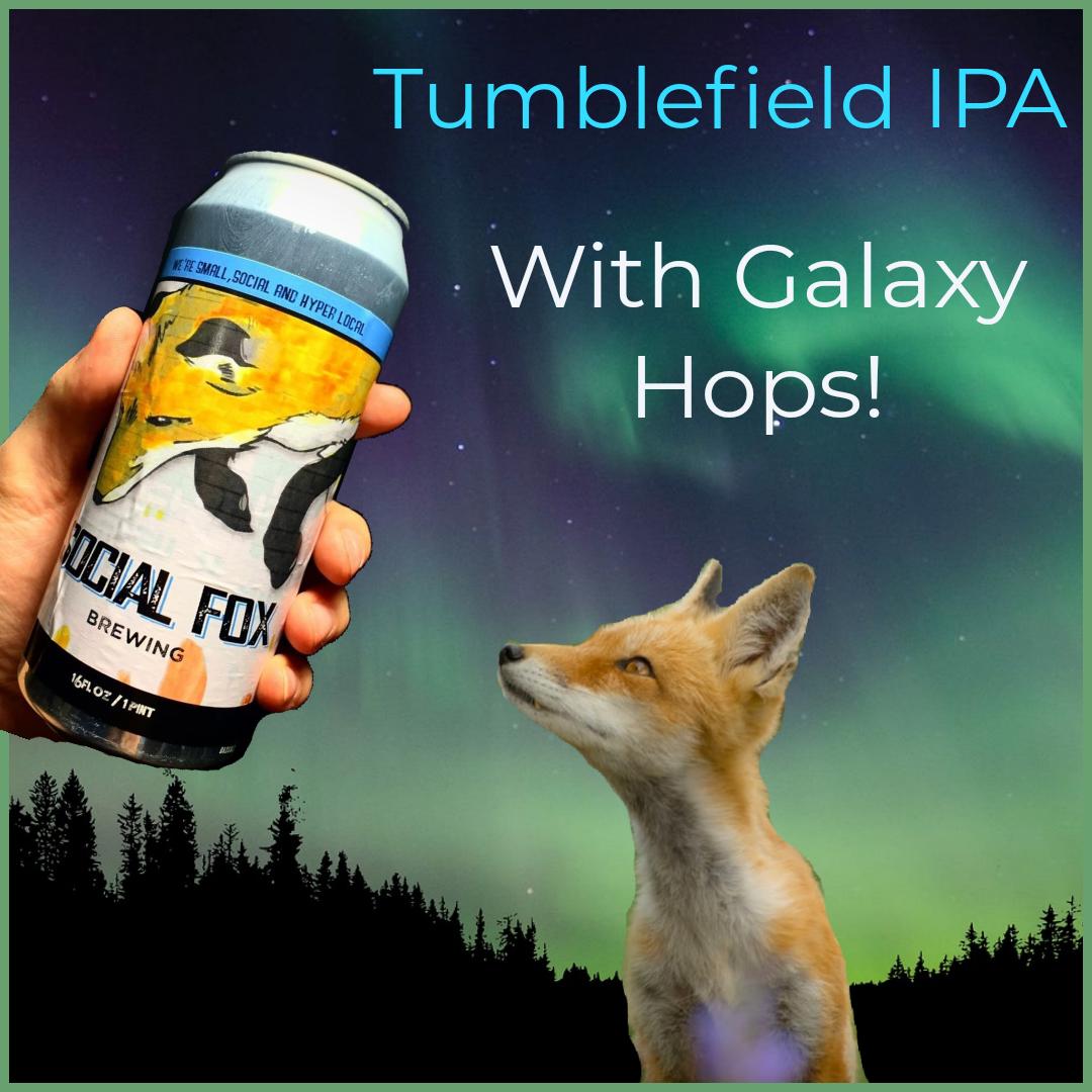 Tumblefield IPA